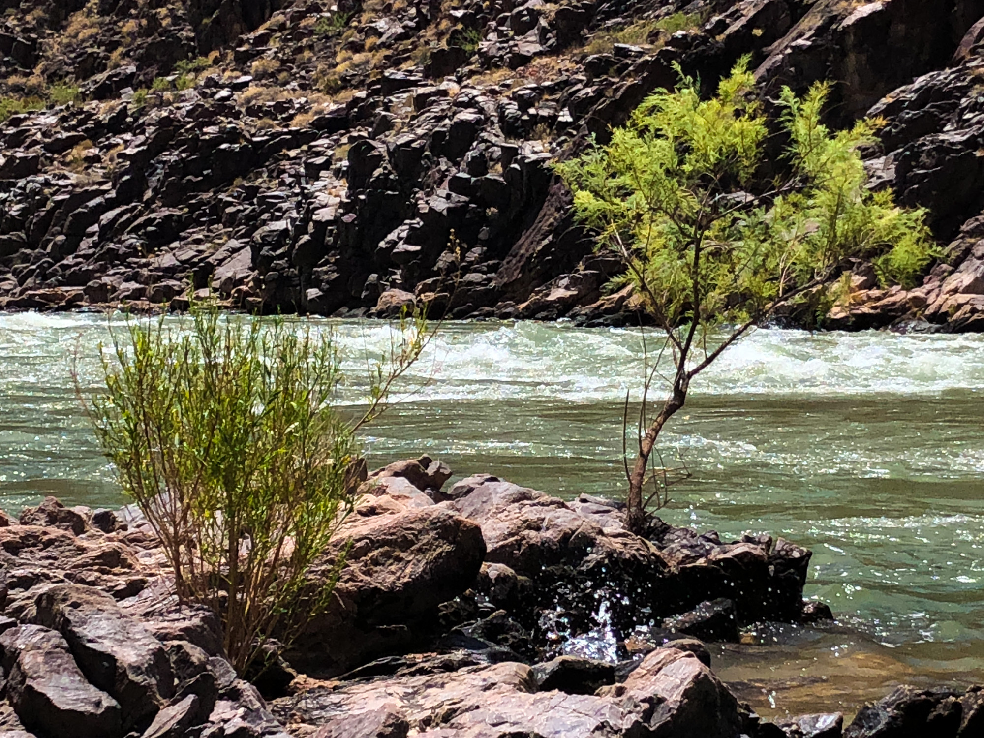 Life by the Colorado River