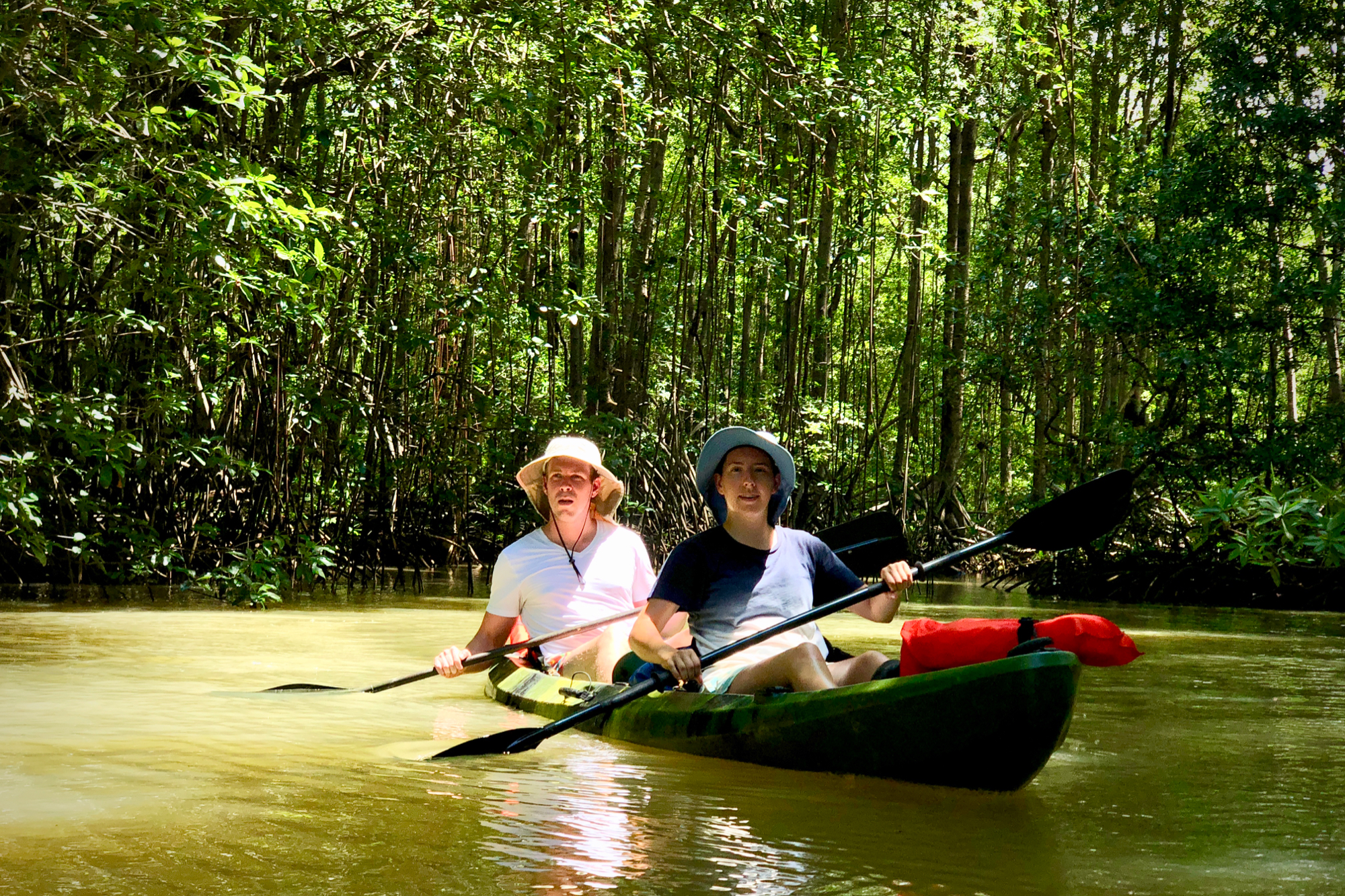 Floating through the Mangrove Forest