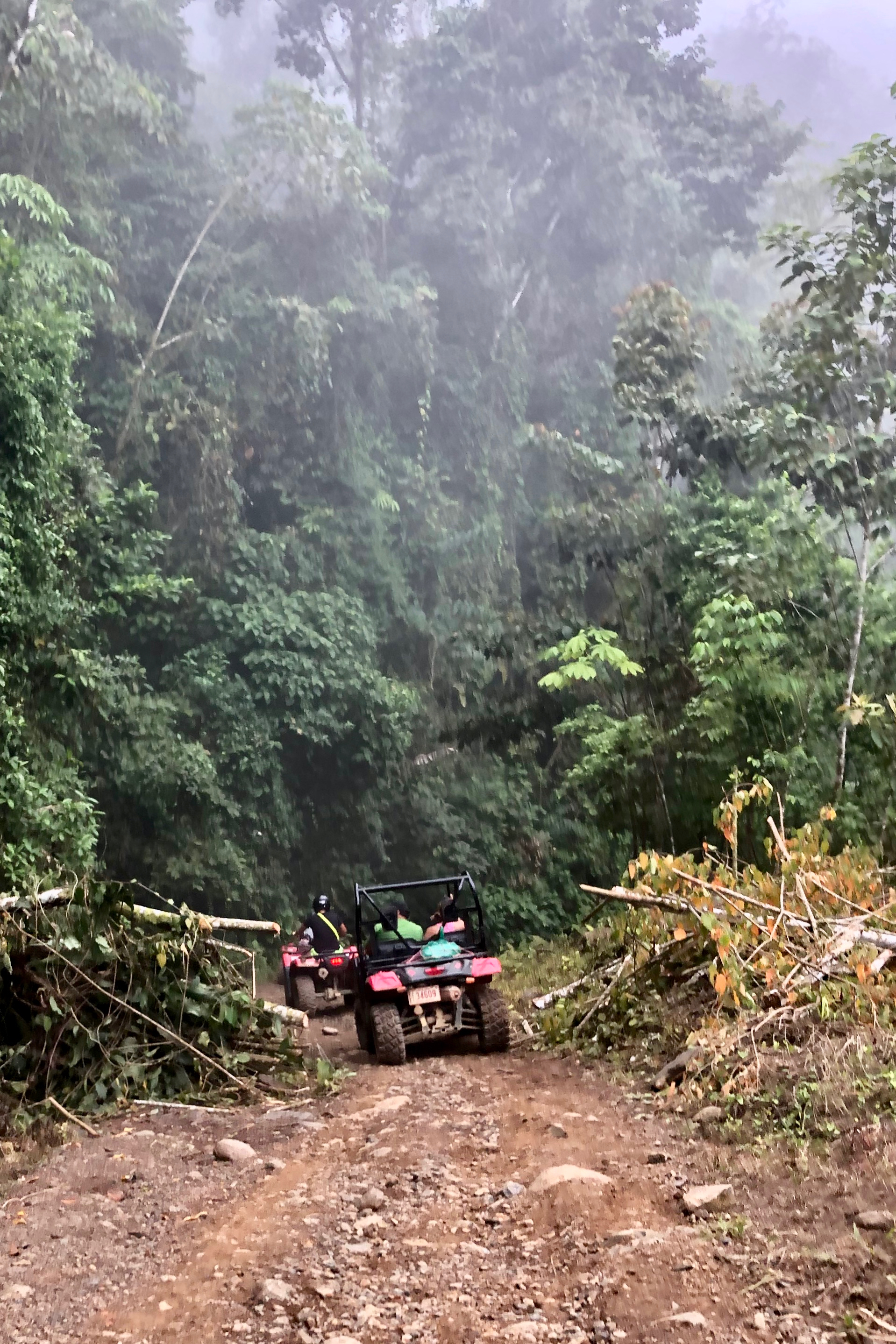 ATV though the clouds in the rainforest