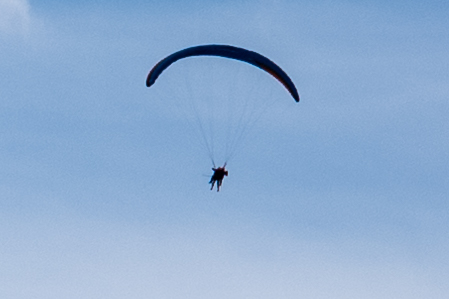 M10, 35mm Summilux. Cropped very tightly. 450x300 pixels. Notice you can see the ropes of the glider.