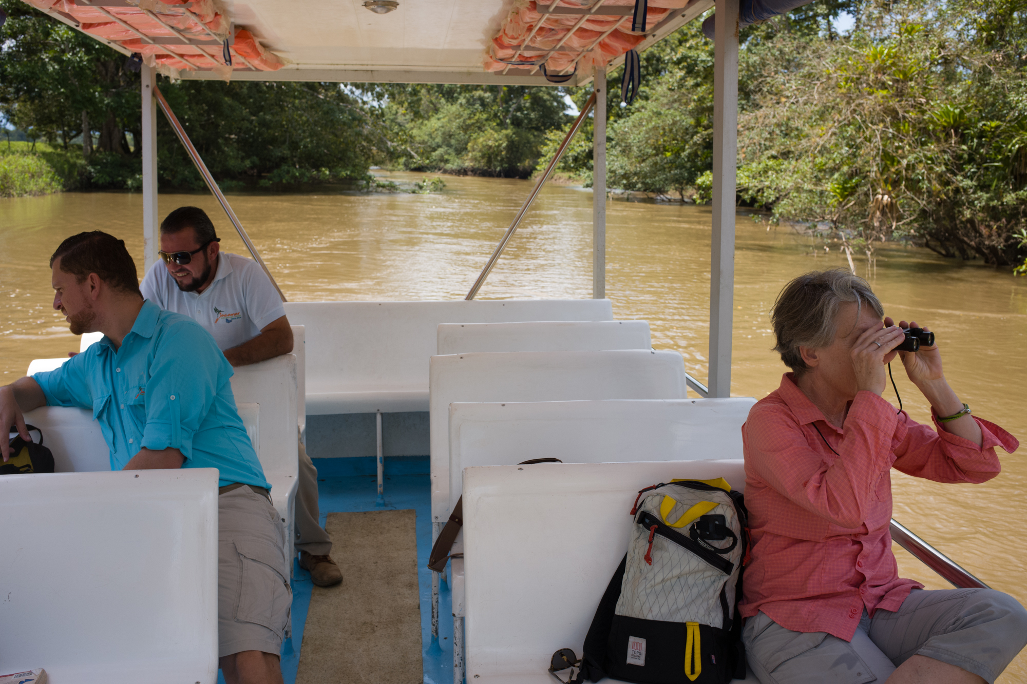 Looking for wildlife on the Cano Negro river