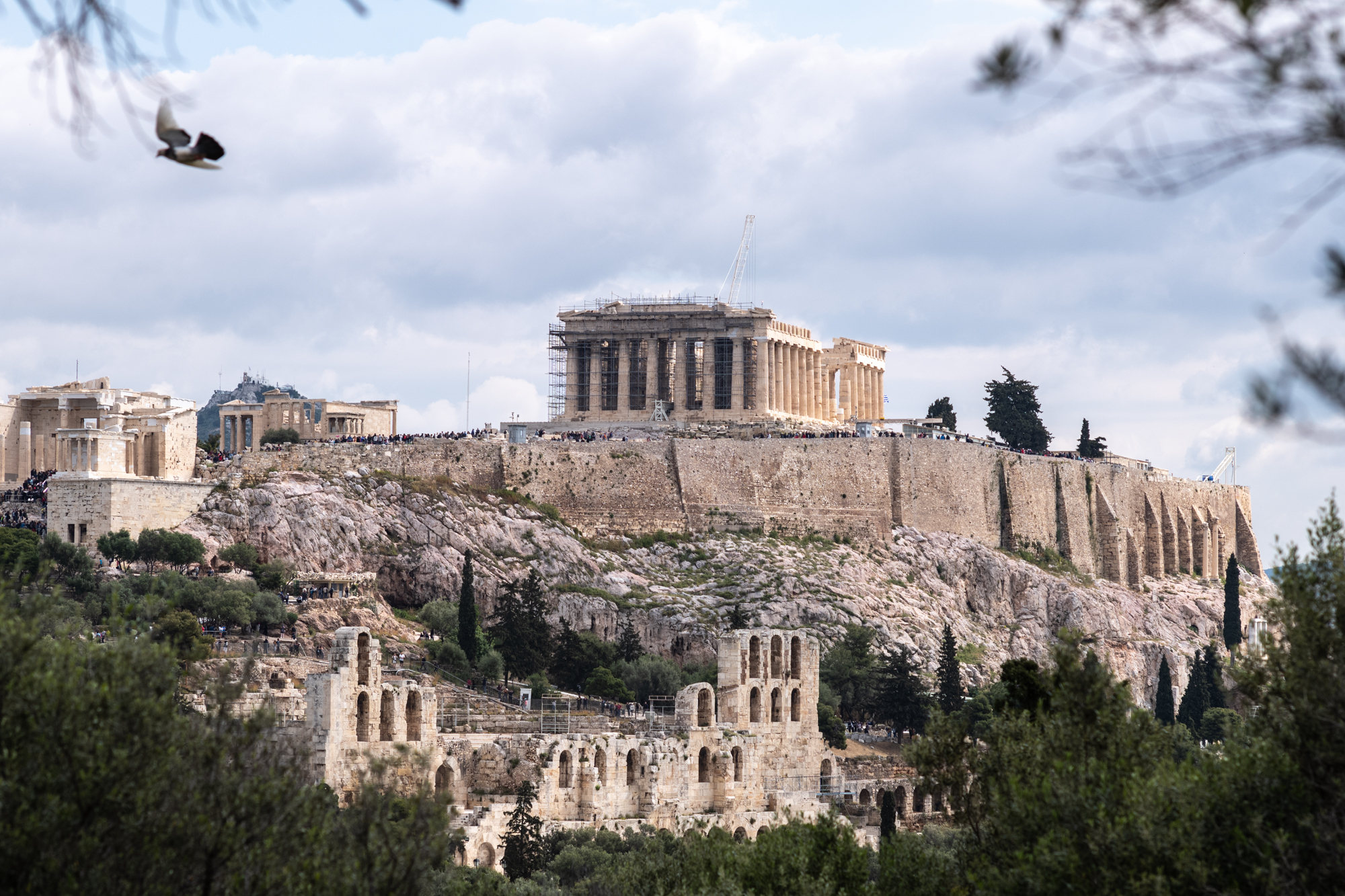 Framing the Acropolis through the trees on Philopappos Hill