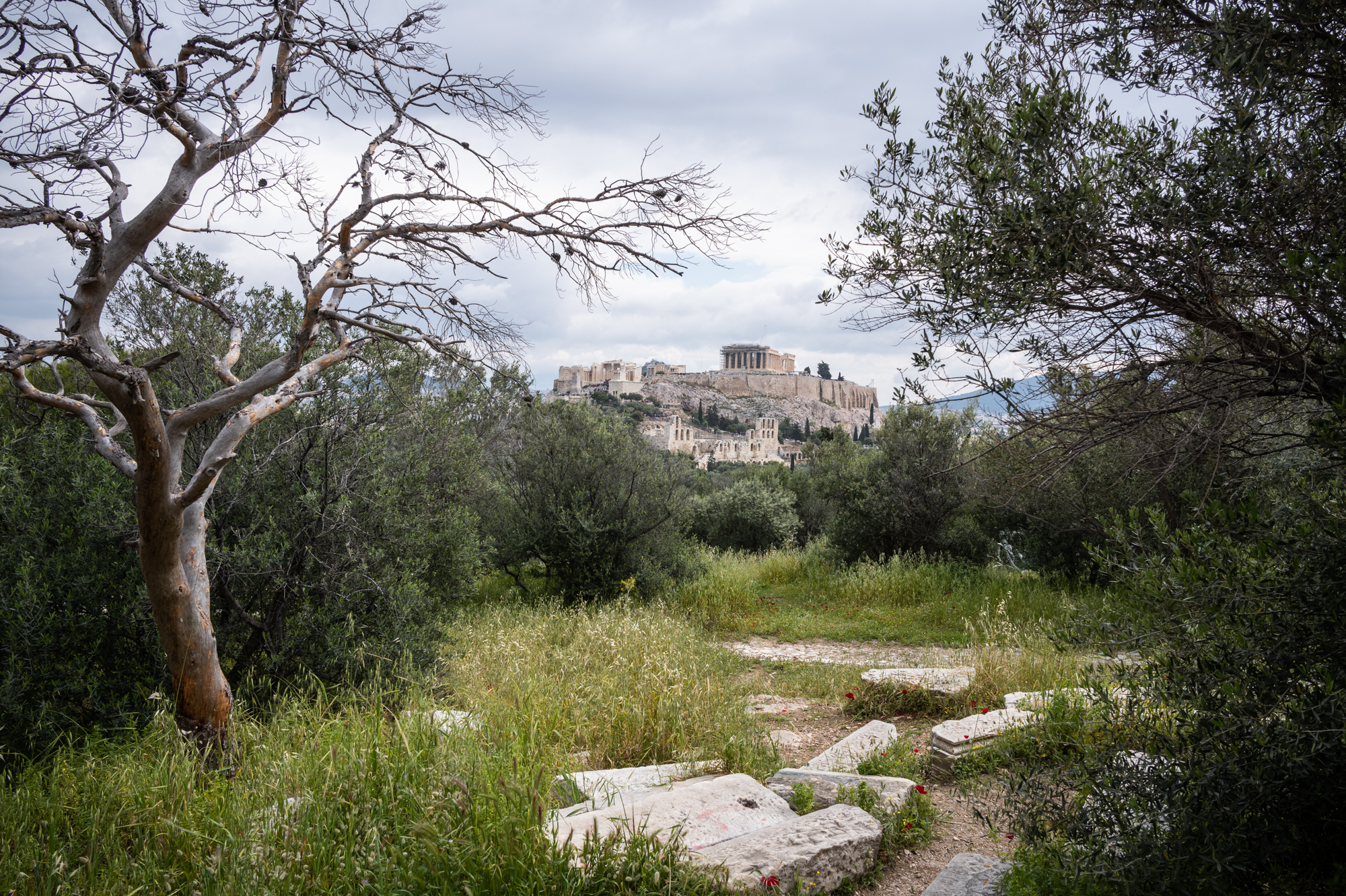 Different view of the Acropolis
