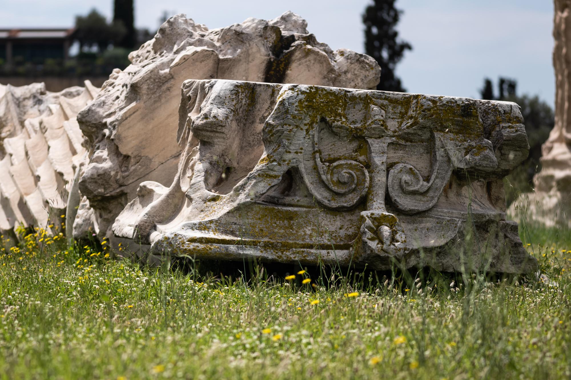 Fallen columns of the Temple of Zeus