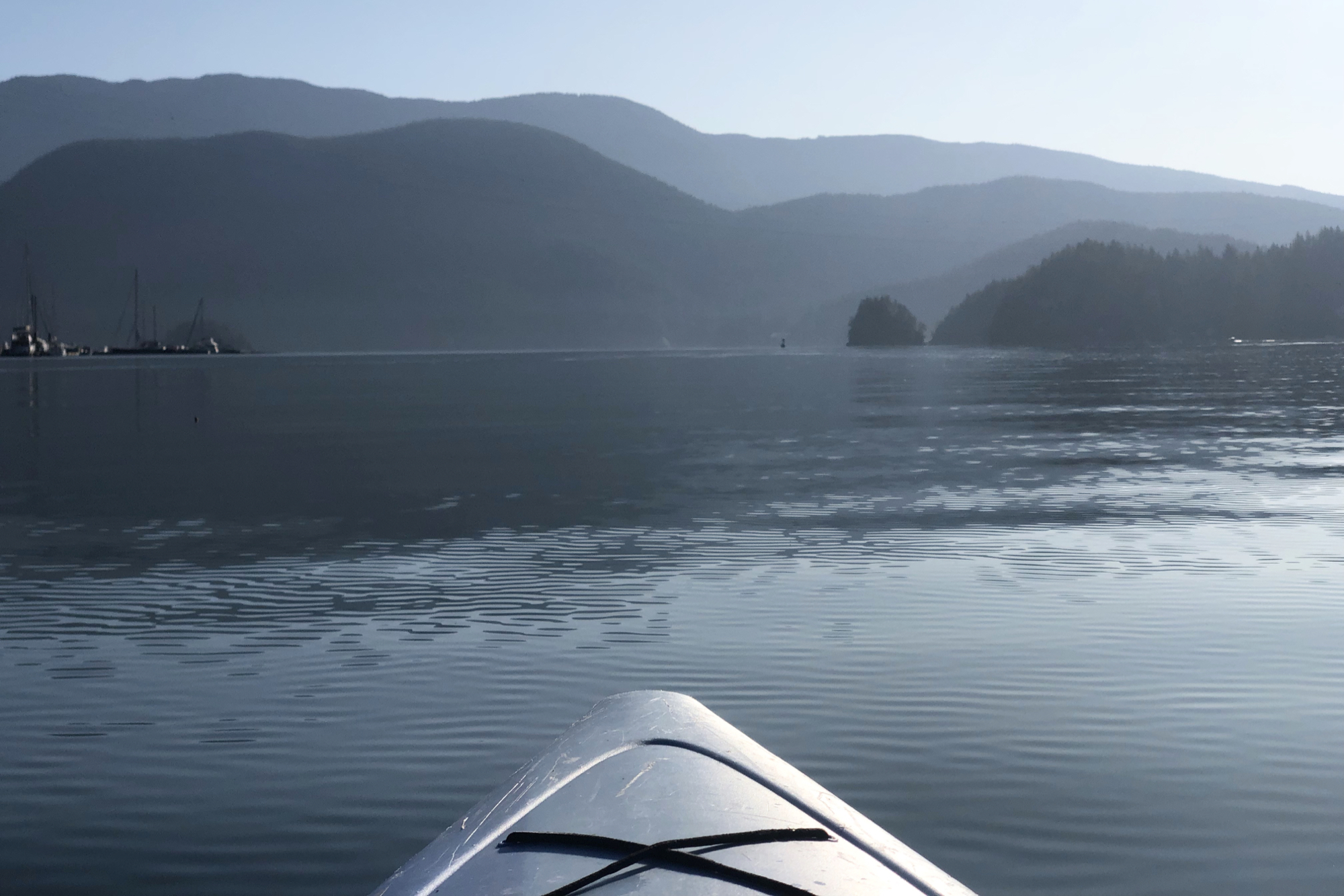 The tranquility of a morning kayak in the fjord is other worldly.