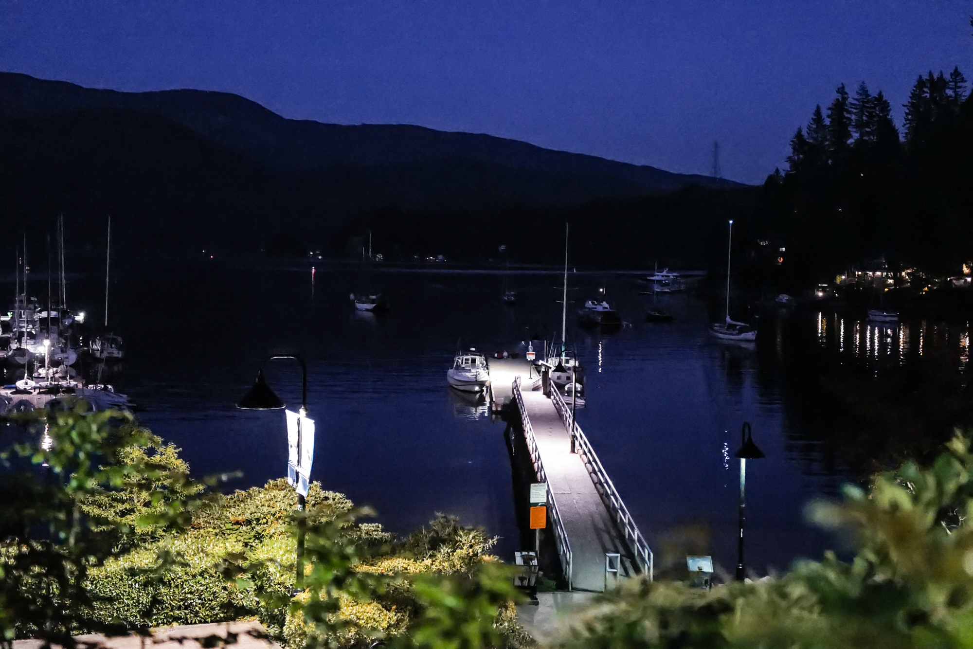 Deep Cove at night