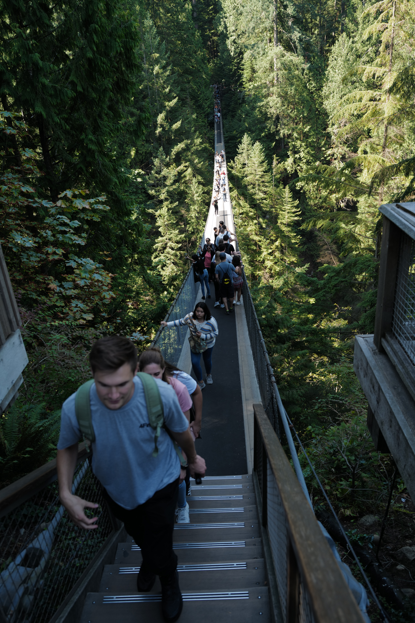 The Capilano Bridge