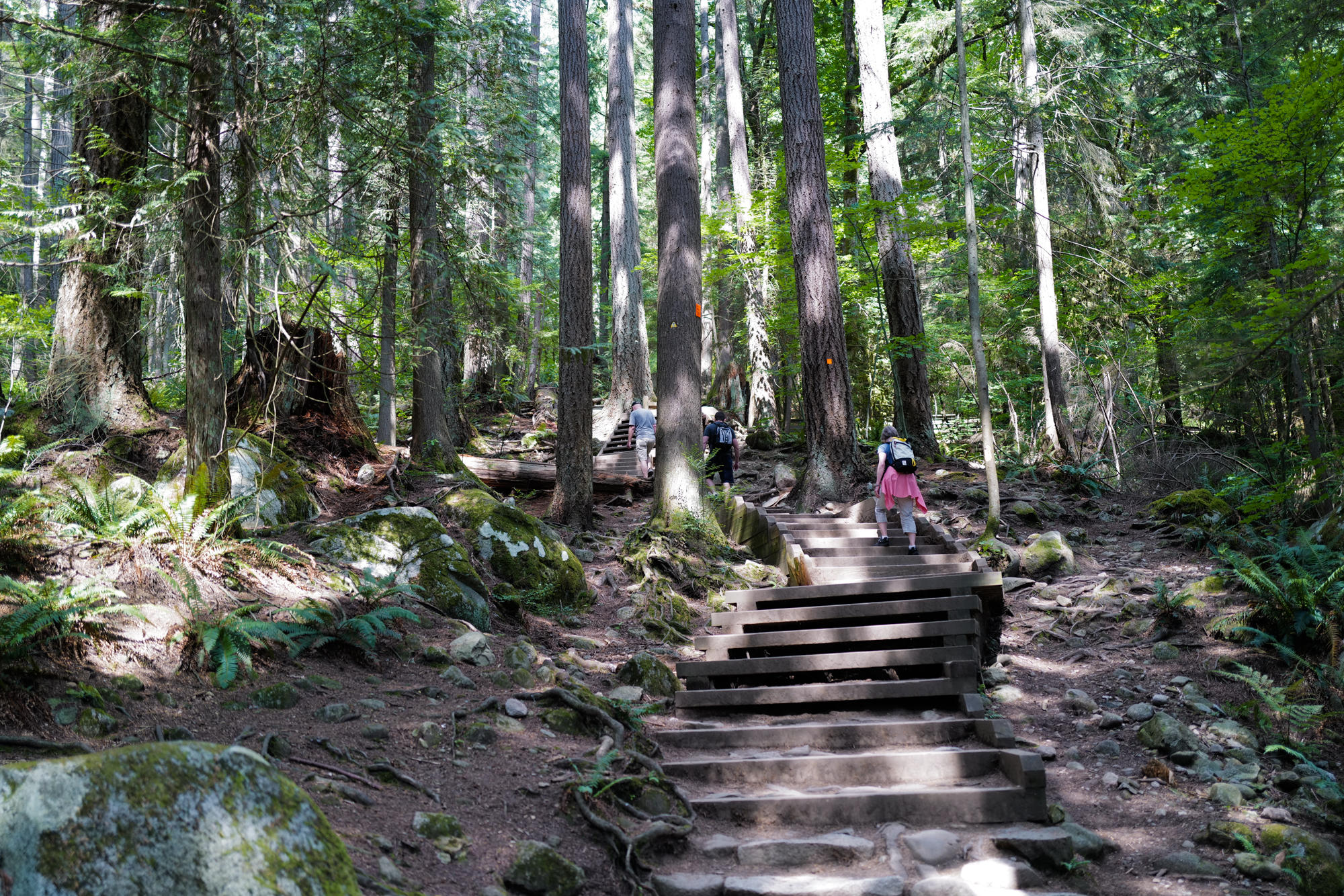 The steep trail to Quarry Rock