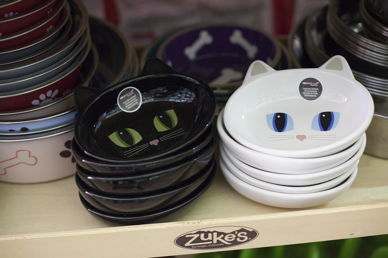 cat dish.jpg