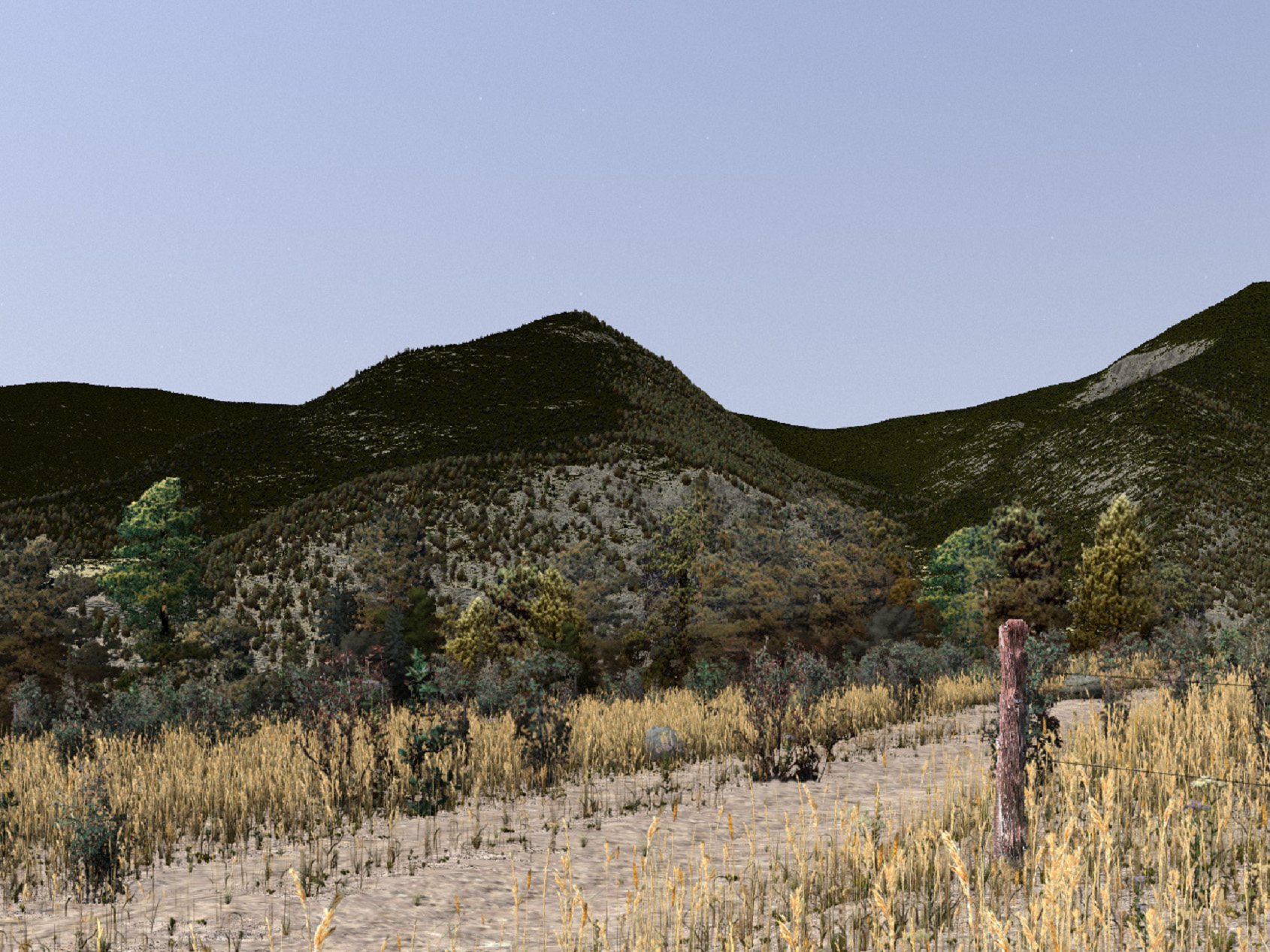"""... and here is another Camera perspective of the """"Horseshoe Park"""", Colorado 3D environmental model in VNS ..."""