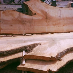 Sustainable table slabs Gig Harbor
