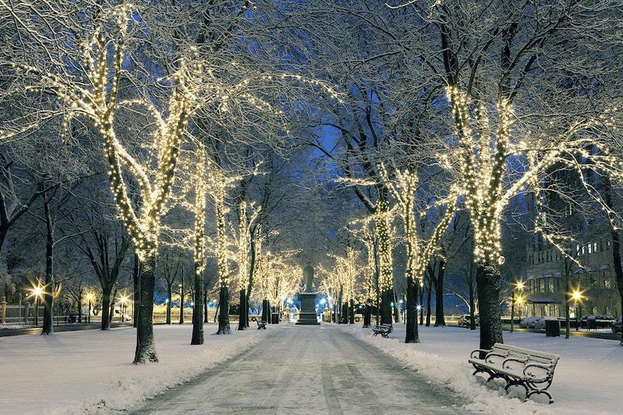 Winter Walks_Sidewalk_Hero-min.jpg