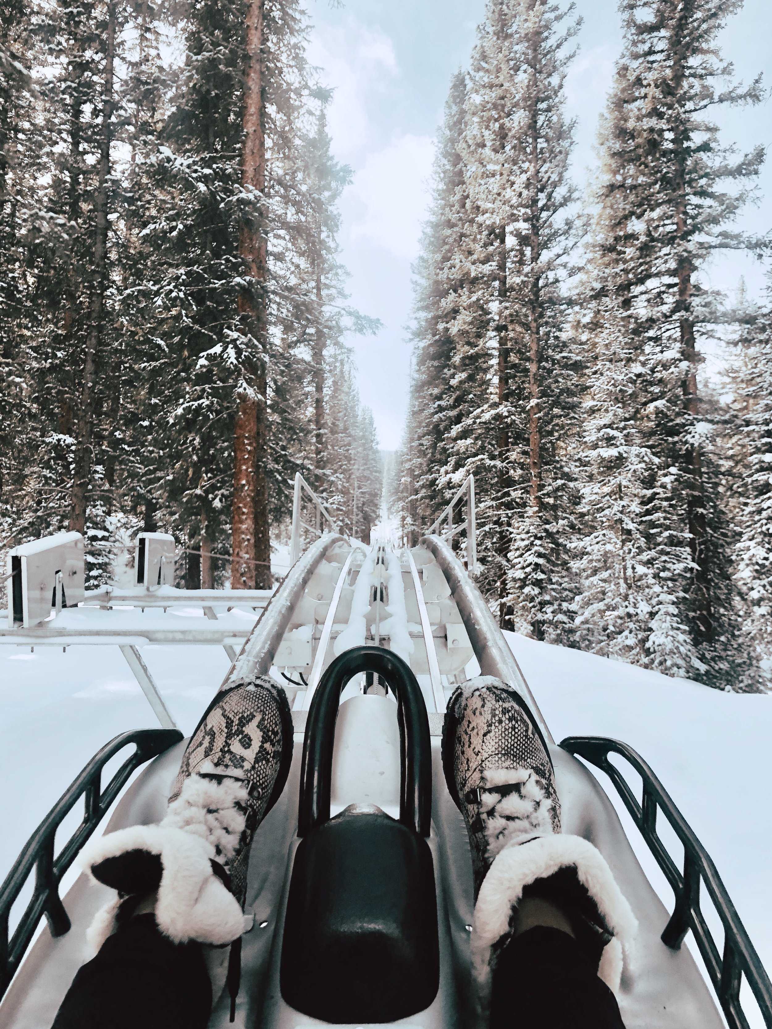 ALPINE COASTER - Snowmass is full of sights to see and endless activities for all ages. We absolutely loved the Gravity driven Alpine coaster, where you can control your own speed while riding through stunning Alpine trees.