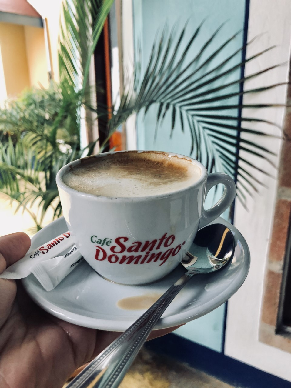 BOULAN-GERIEFRANCAISE - Local french bakery in the heart of Las Terranas town, filled with delicious pastries, beignets, fresh pain au chocolate and ofcourse, local Dominican coffee.Easy walking distance to the shopping plaza and galleries.