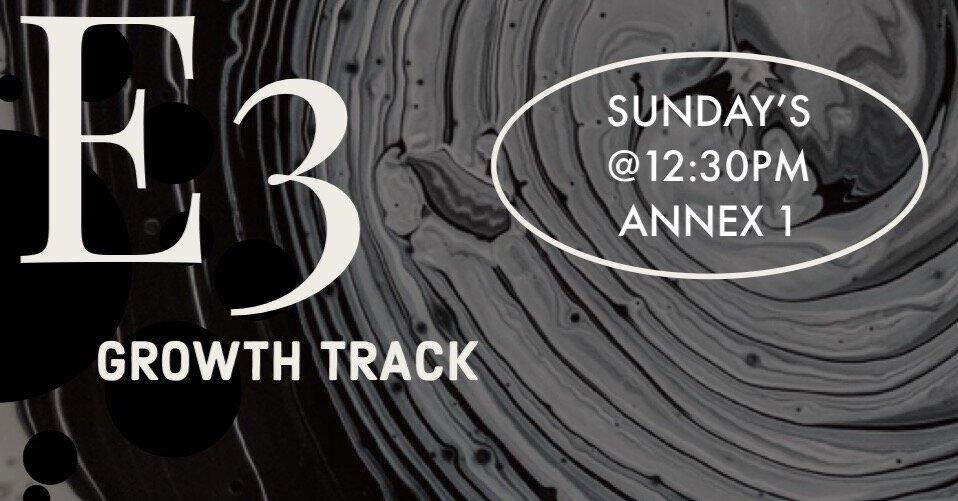 E3+Growth+Track.jpg