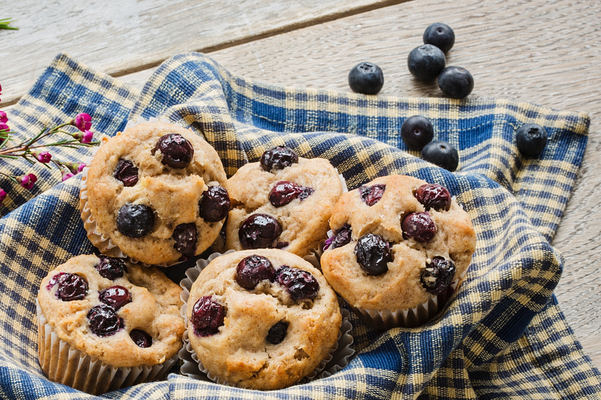 Pancreatic Cancer Cookbook Blueberry Muffins