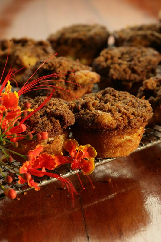Iguana Lodge Cinnamon Muffins