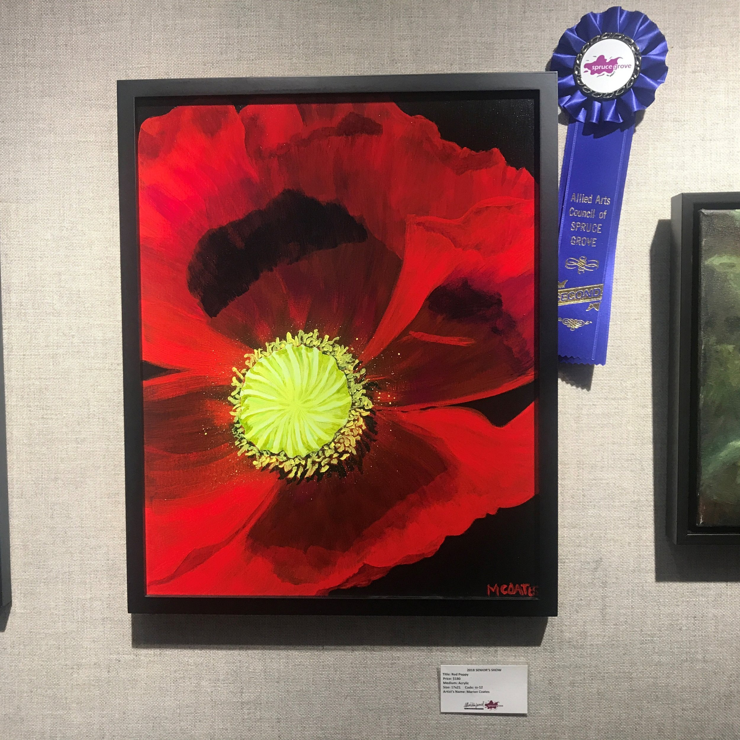 Marion Coates -Red Poppy 2nd Place