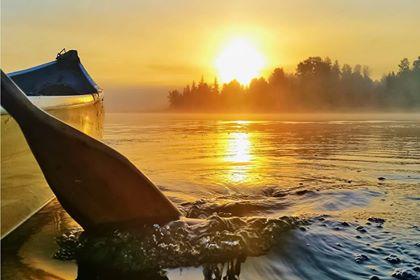 Golden Paddle.jpg