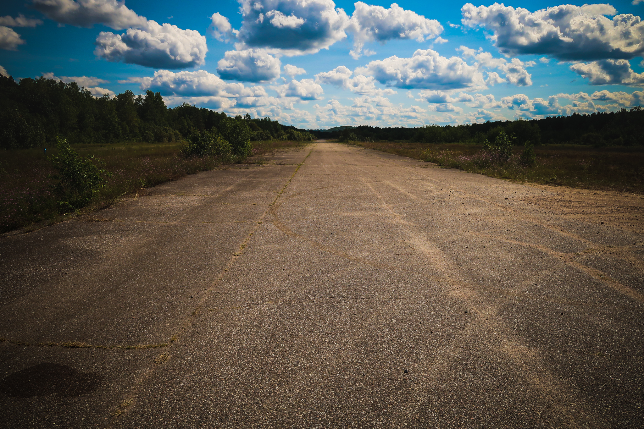 An abandoned government airstrip in the middle of the woods.