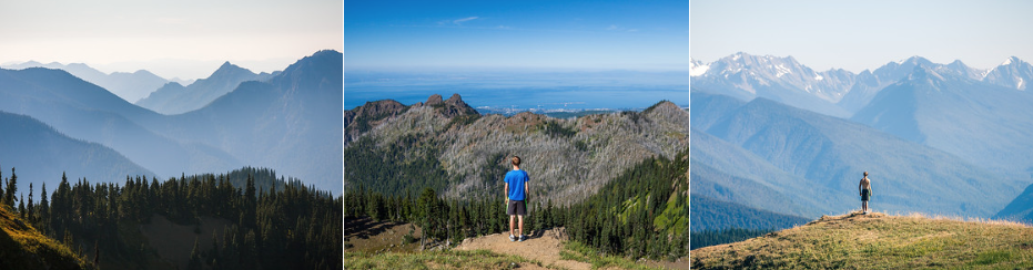 3.2 miles RT - 650ft of gain.  After the drive up to Hurricane Ridge, this short hike is the perfect way to stretch your legs. From the top you can see out over the Olympic Mountains as well as over the city of Port Angeles and even out to Vancouver Island.  WTA link:  https://www.wta.org/go-hiking/hikes/hurricane-hill   AllTrails link:  https://www.alltrails.com/trail/us/washington/hurricane-hill-via-hurricane-ridge