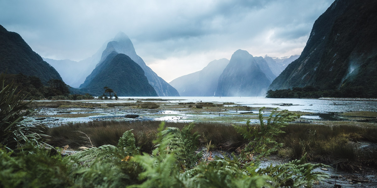 Moody Milford Sound by Michael Matti.jpg