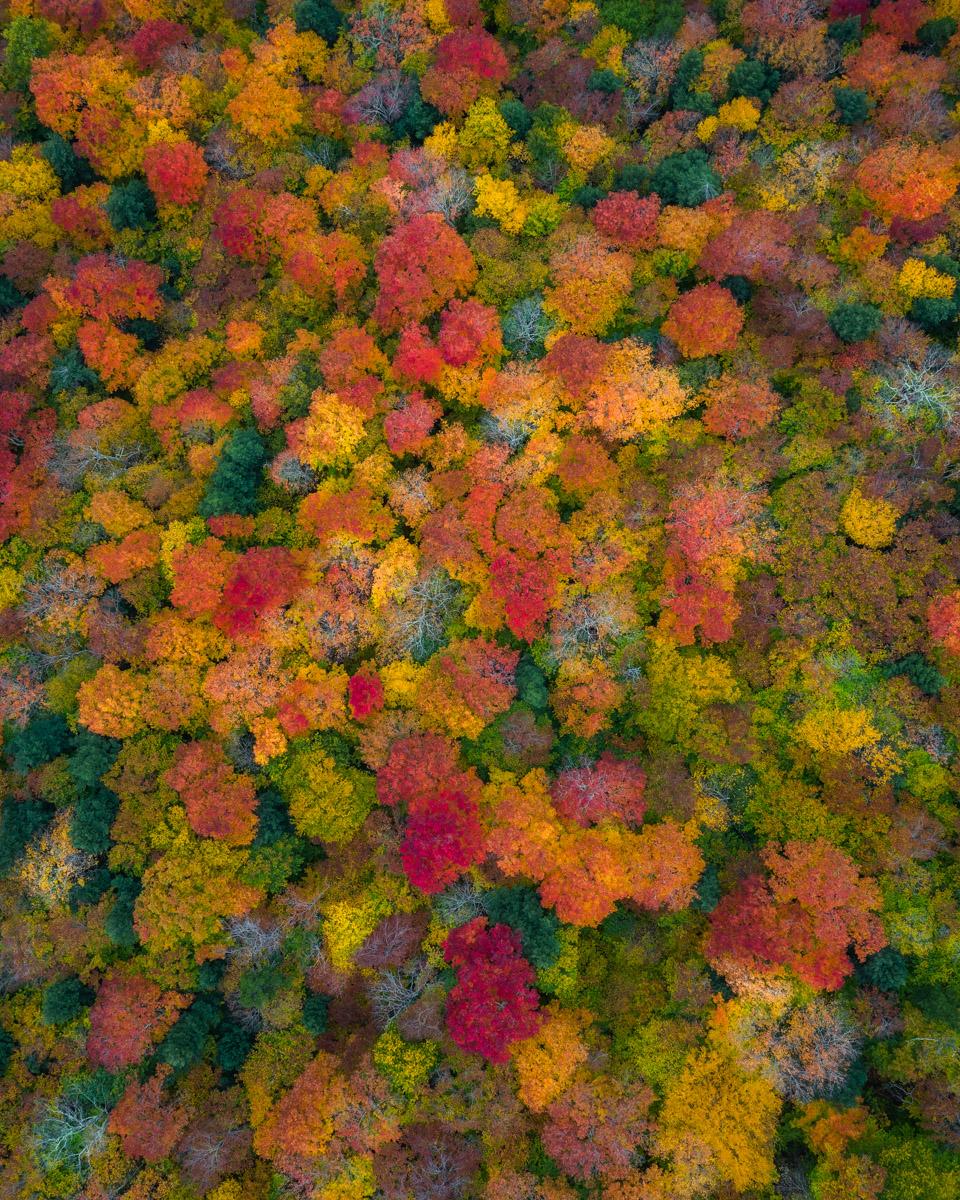 Visit New Hampshire -