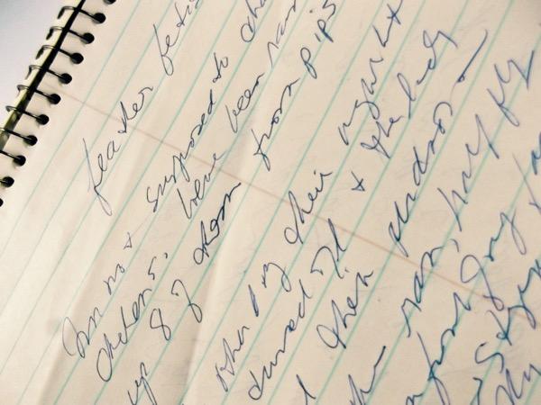 Journal-Scribbles.jpg