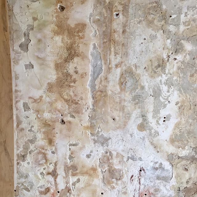 Hundreds of years of age on these walls.  #historicpreservation #historicinteriors #patina #plaster #lath #brick #neworleans