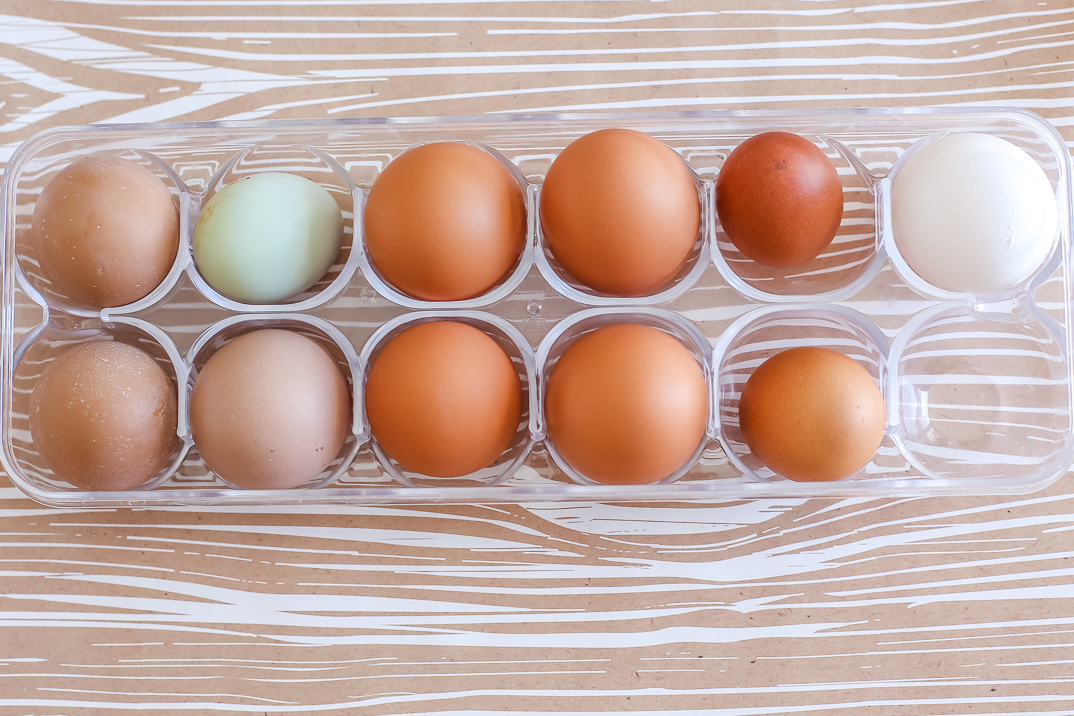 Eggs from different chicken breeds