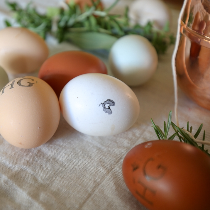 Stamping the eggs