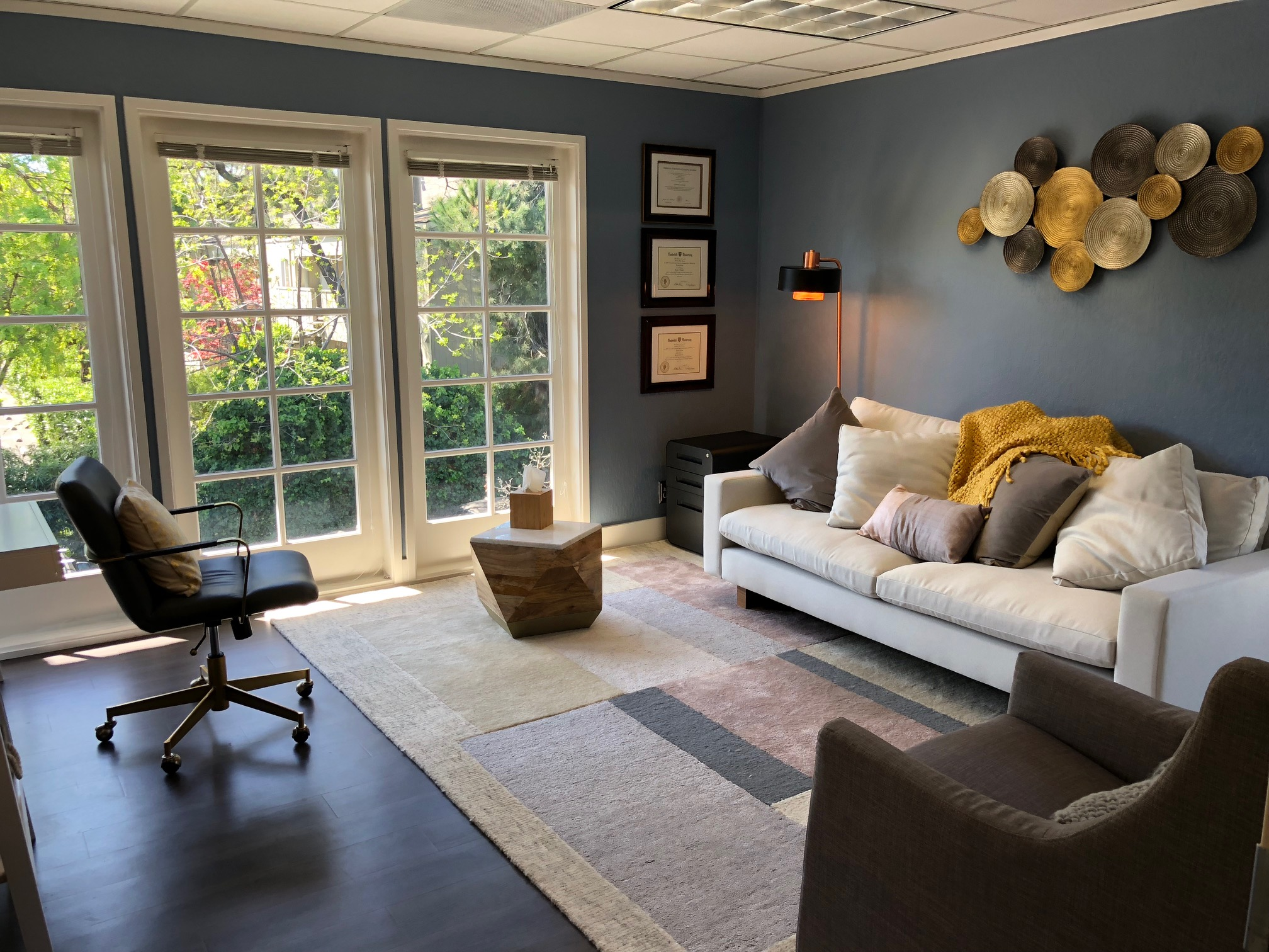 Therapy and consultation room