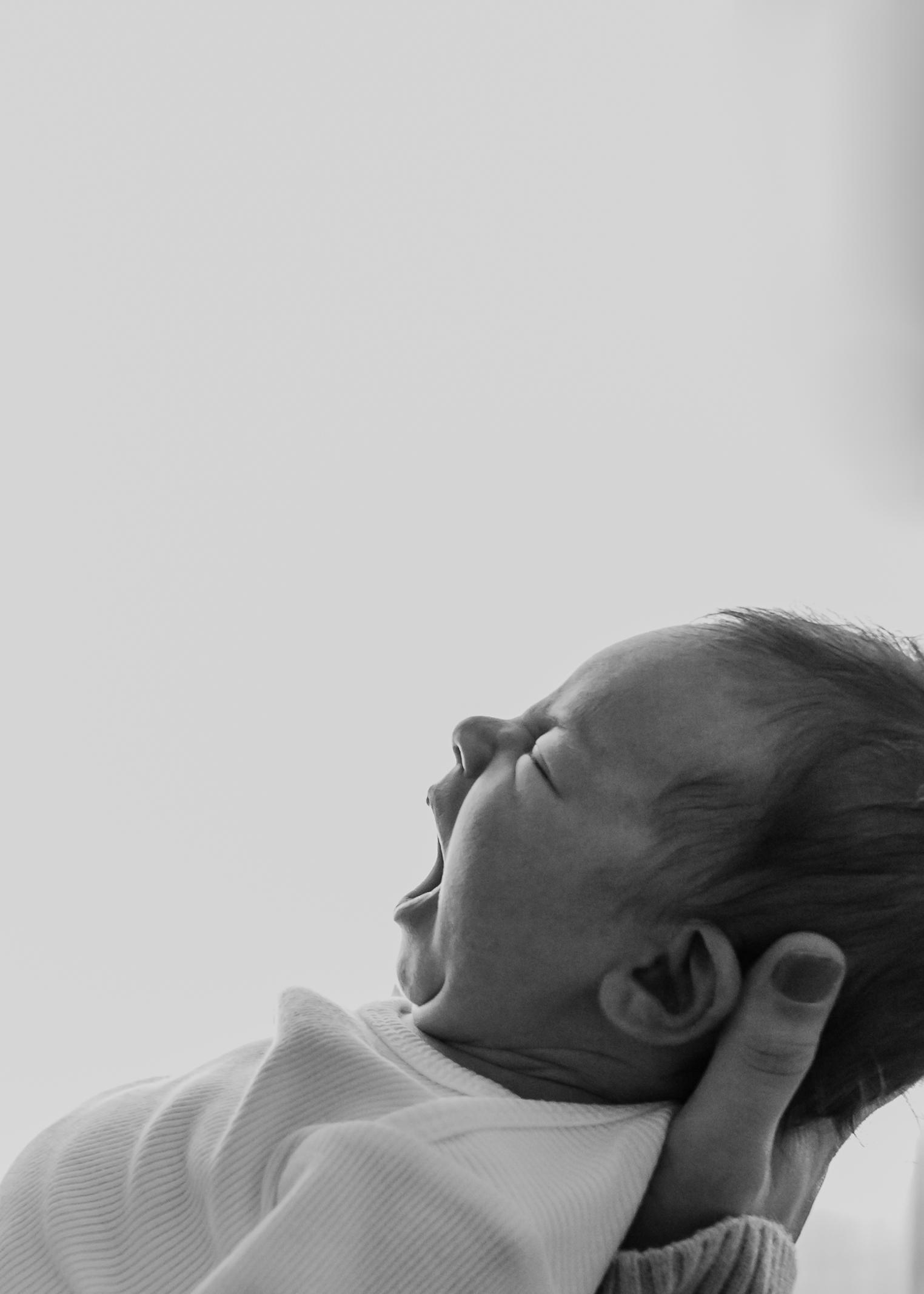 BabyBeau-35.jpg
