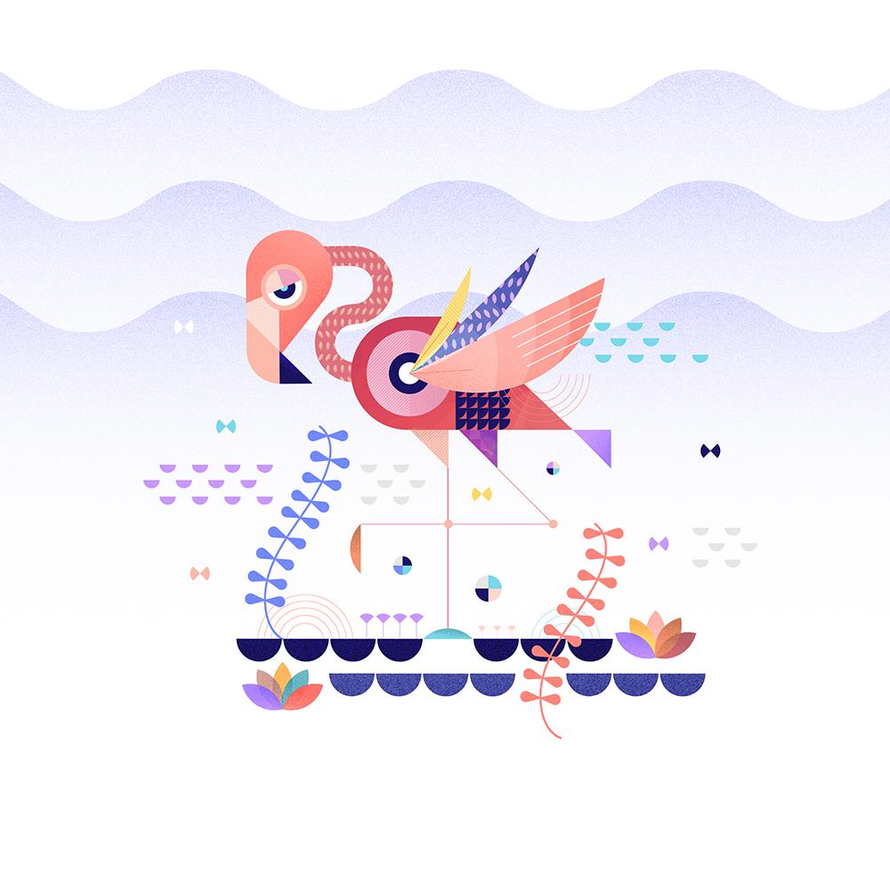 Zooillo_Flamingo_Final_1000px_72.jpg