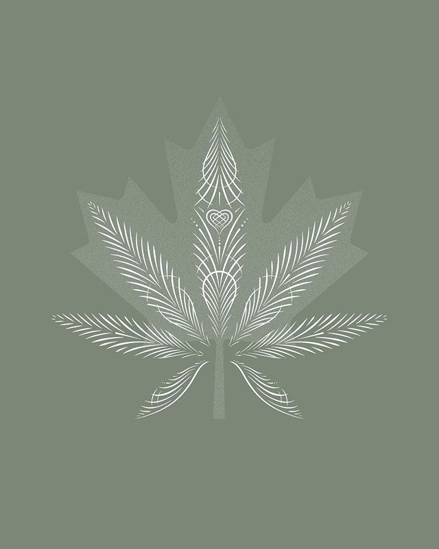 Happy Legalization Day Canada!  It's truly incredible to witness history in the making and be a part of it. Cannabis is a healing medicine that the world needs. Thank you Canada for taking this monumental first step towards helping everyone understand the miracles of our incredible plant.  Check out our story for a free wallpaper 💚  #legalizationday #canada #cannabis #ohcannabis #countdowntolegalization #legalization #2018 #endofprohibition #freedom #healthy #healthylifestyle #history #cannabislegalization #cannabisindustry #cannabiscommunity #plantmedicine #plantbased #design #illustration #logodesigns #art #illustrationgram #madebyaalchemy