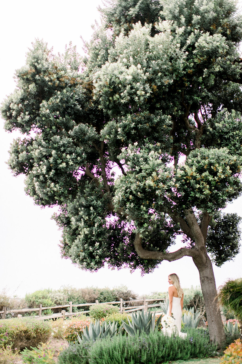 elevatedpulsepro.com   Santa Barbara Wedding for NFL Star   Brett Hickman Photography (51).jpg