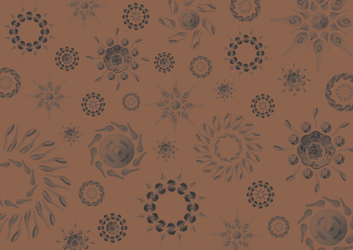 Wrapping paper printed on metallic bronze, one of the colours specified for the restaurant's identity
