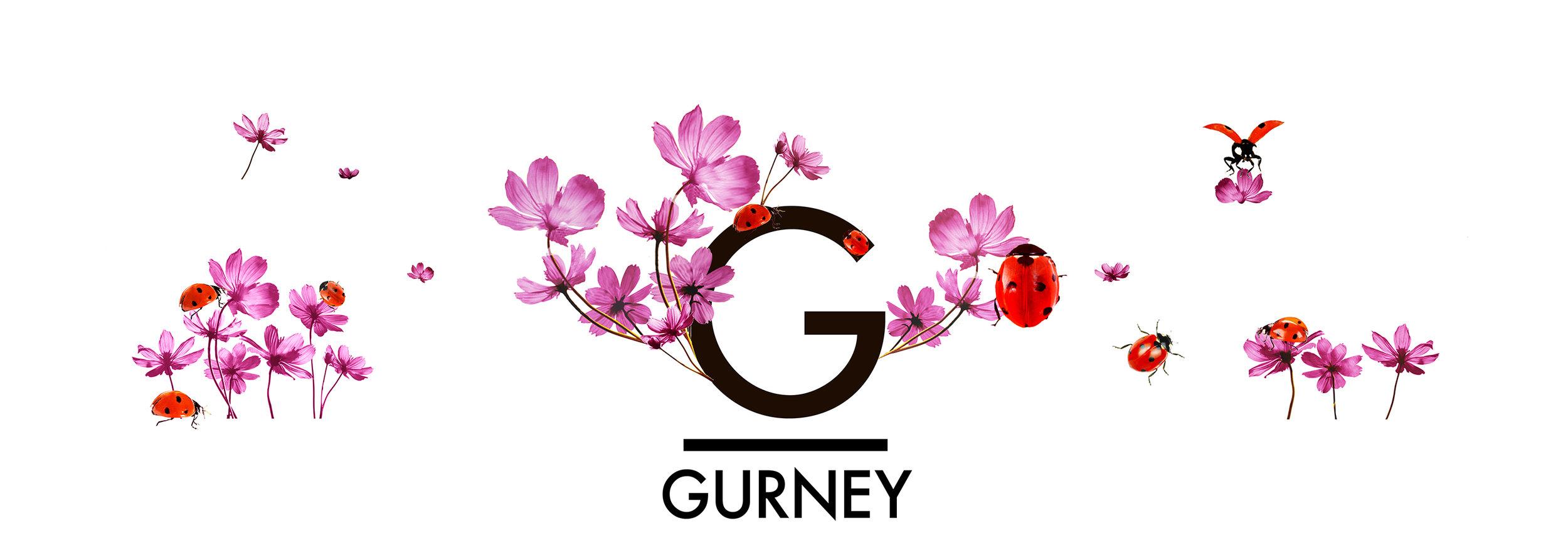 whwWeb_Arkadia_Corridor_Gurney.jpg