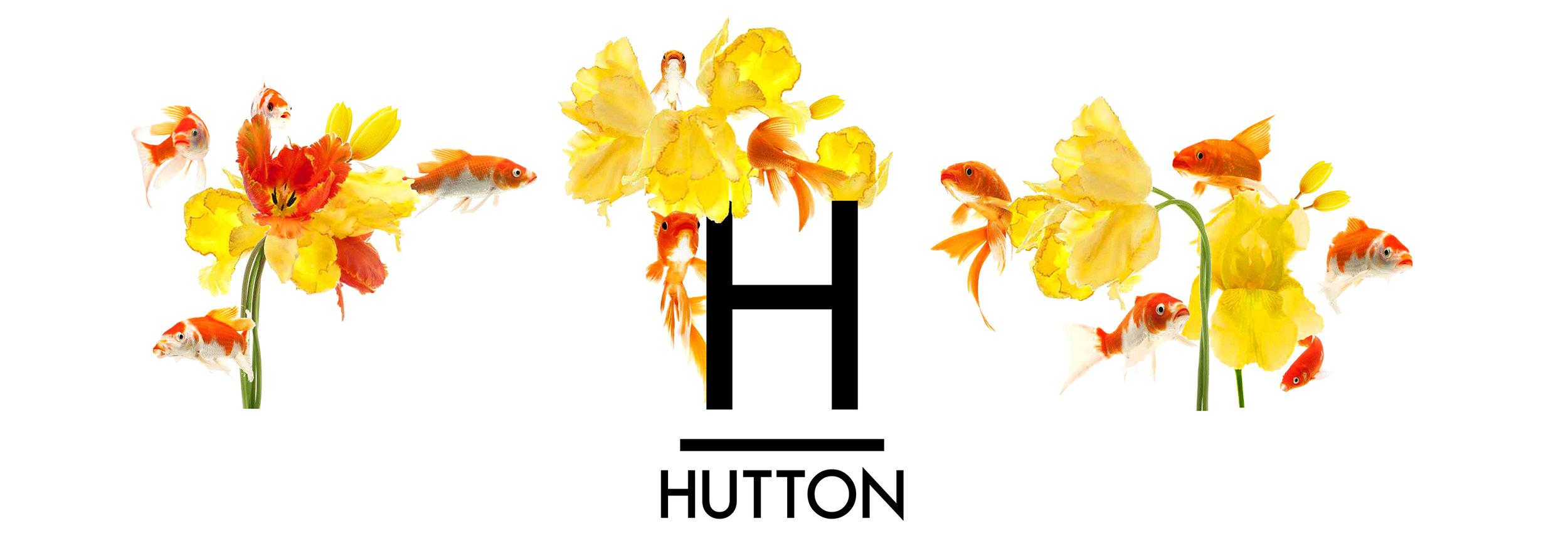 whwWeb_Arkadia_Corridor_Hutton.jpg