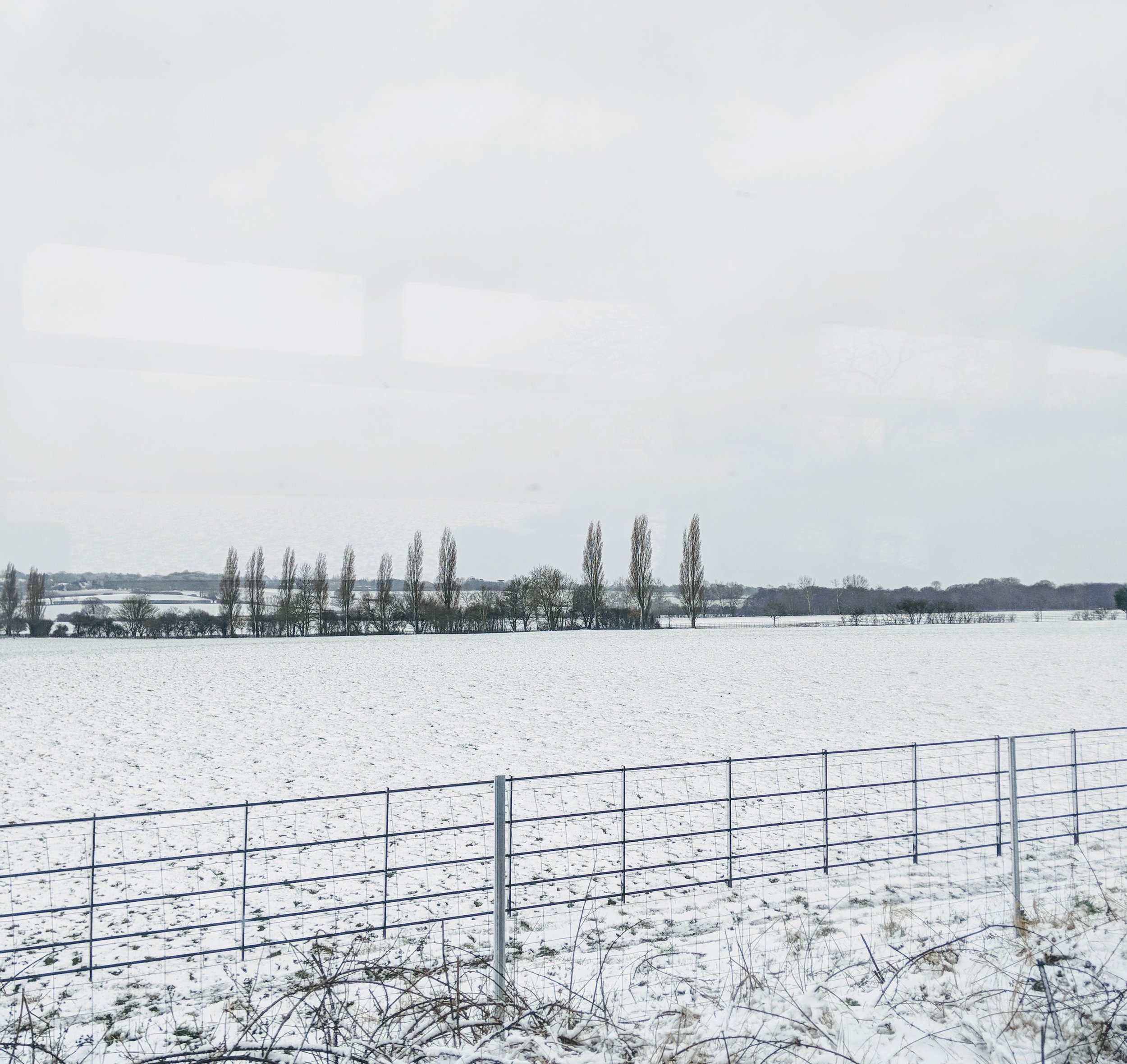 Snowy Day in Chelmsford