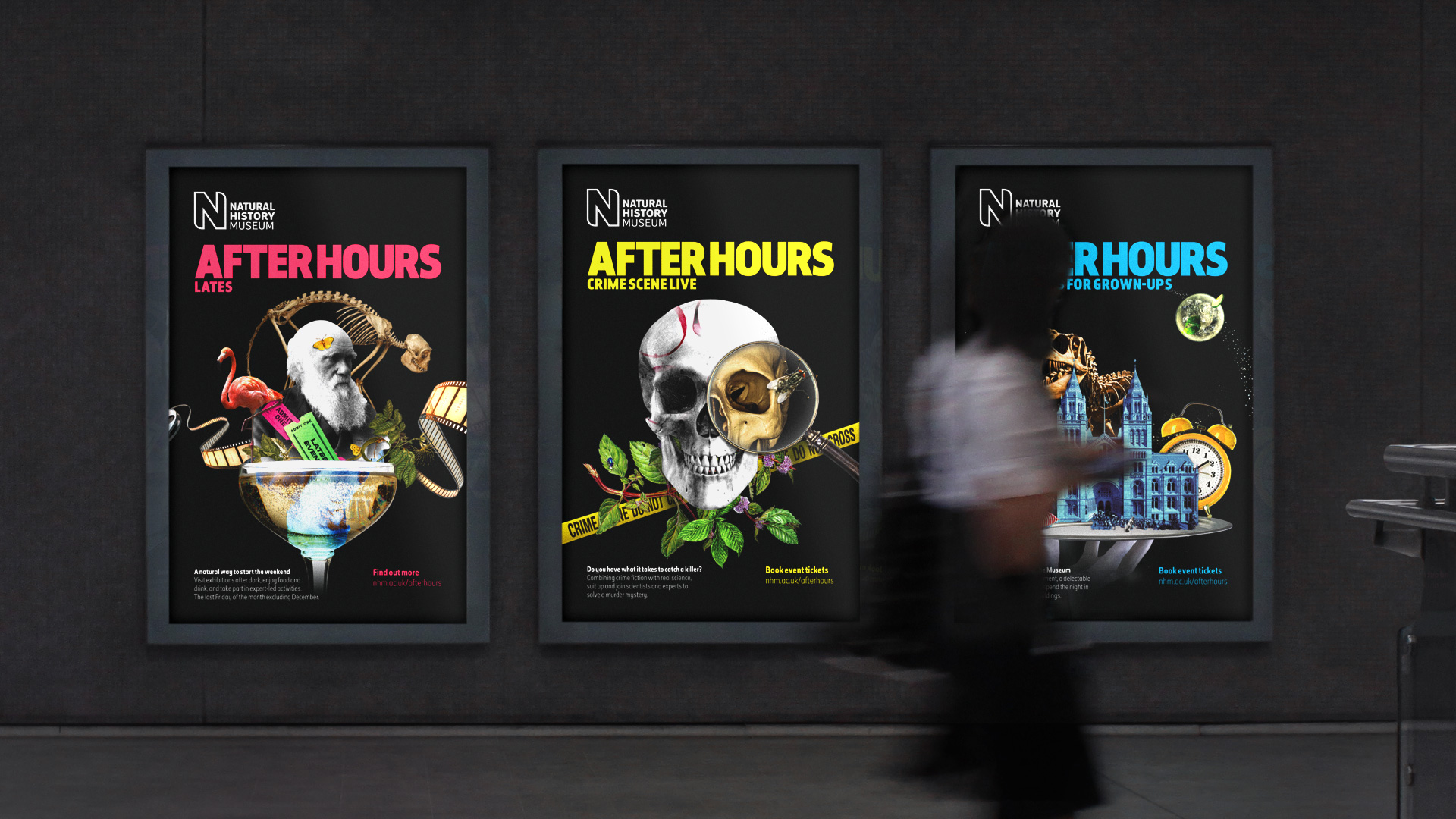 Natural History Museum: After Hours brand identity