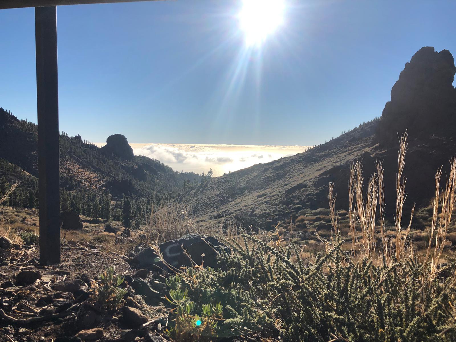 Desert view.jpeg