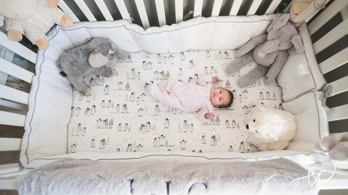 conshohocken_newborn_photographer_01.jpg