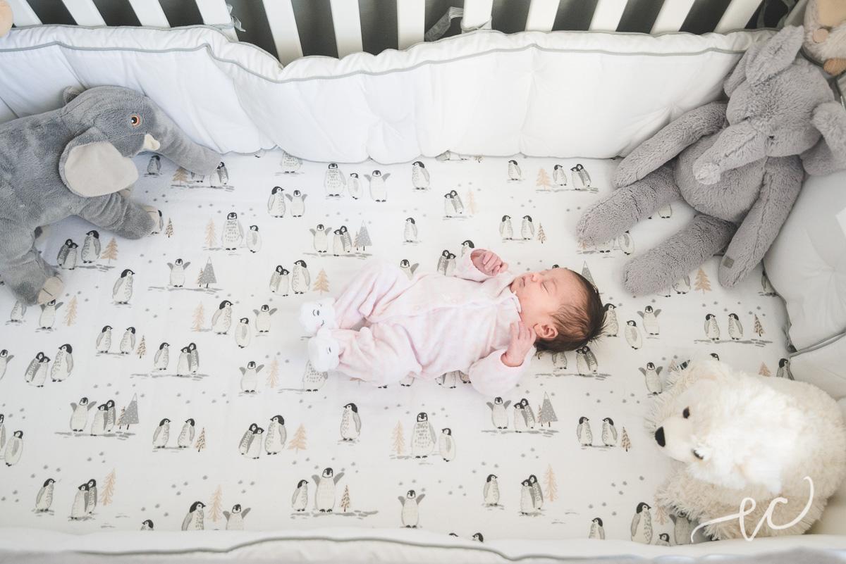conshohocken_newborn_photographer_02.jpg