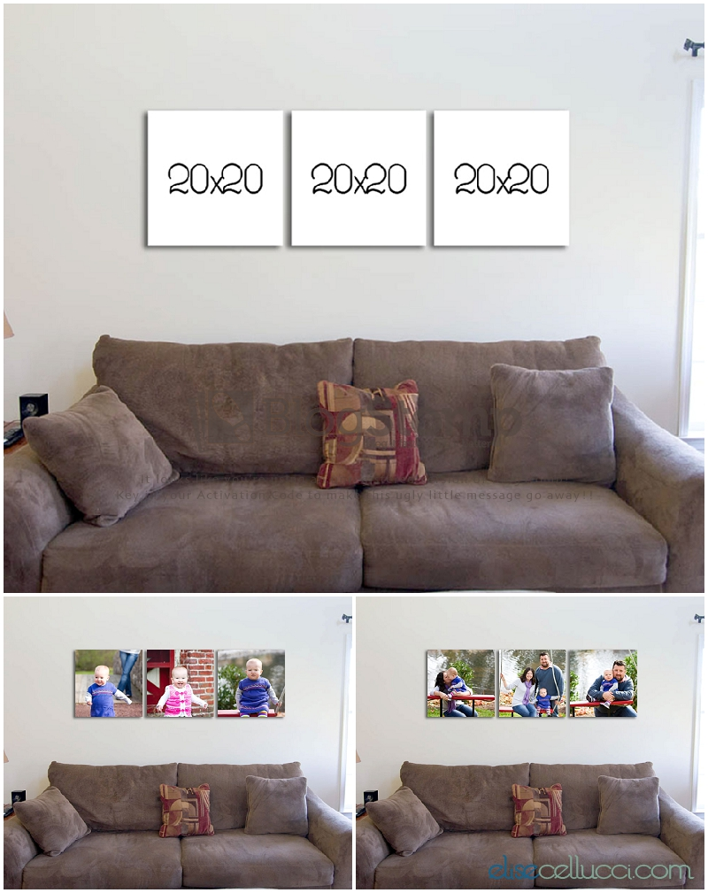 Photography Wall Displays