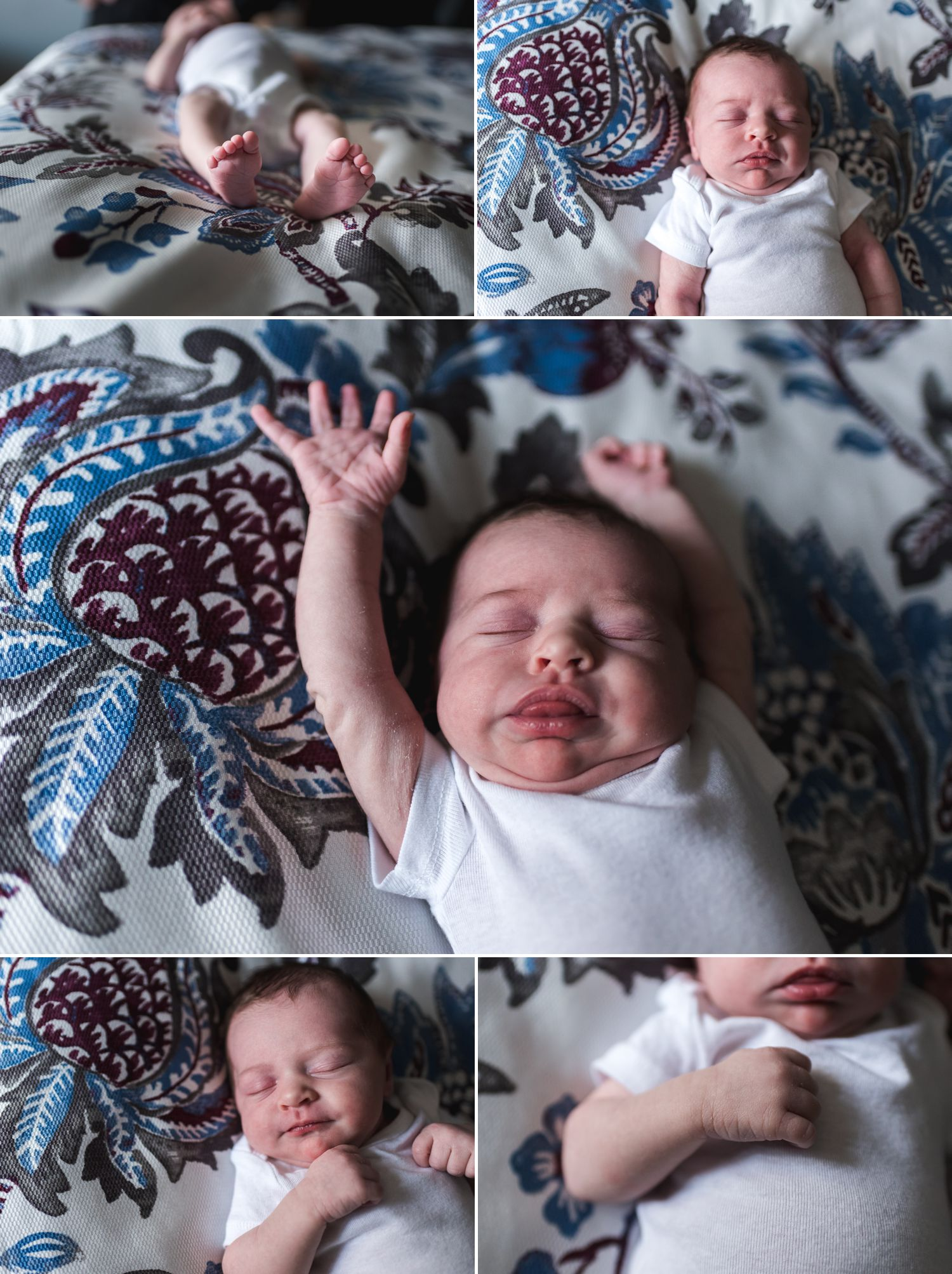 lifestyle newborn session | newborn photographer north wales pa