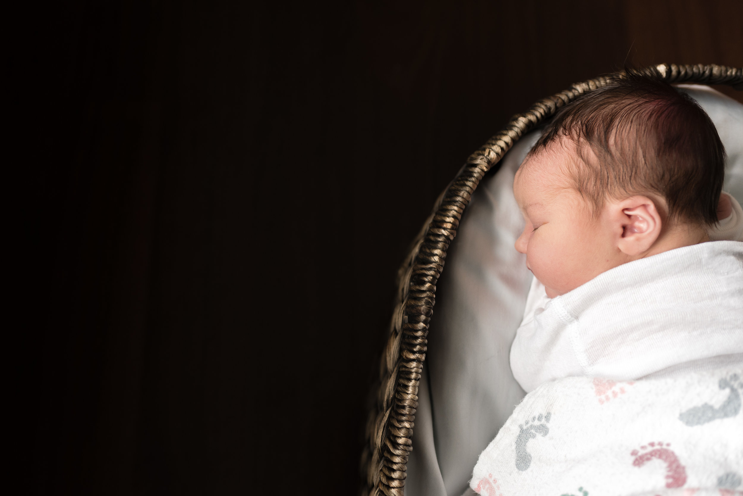 newborn picture in basket north wales photographers
