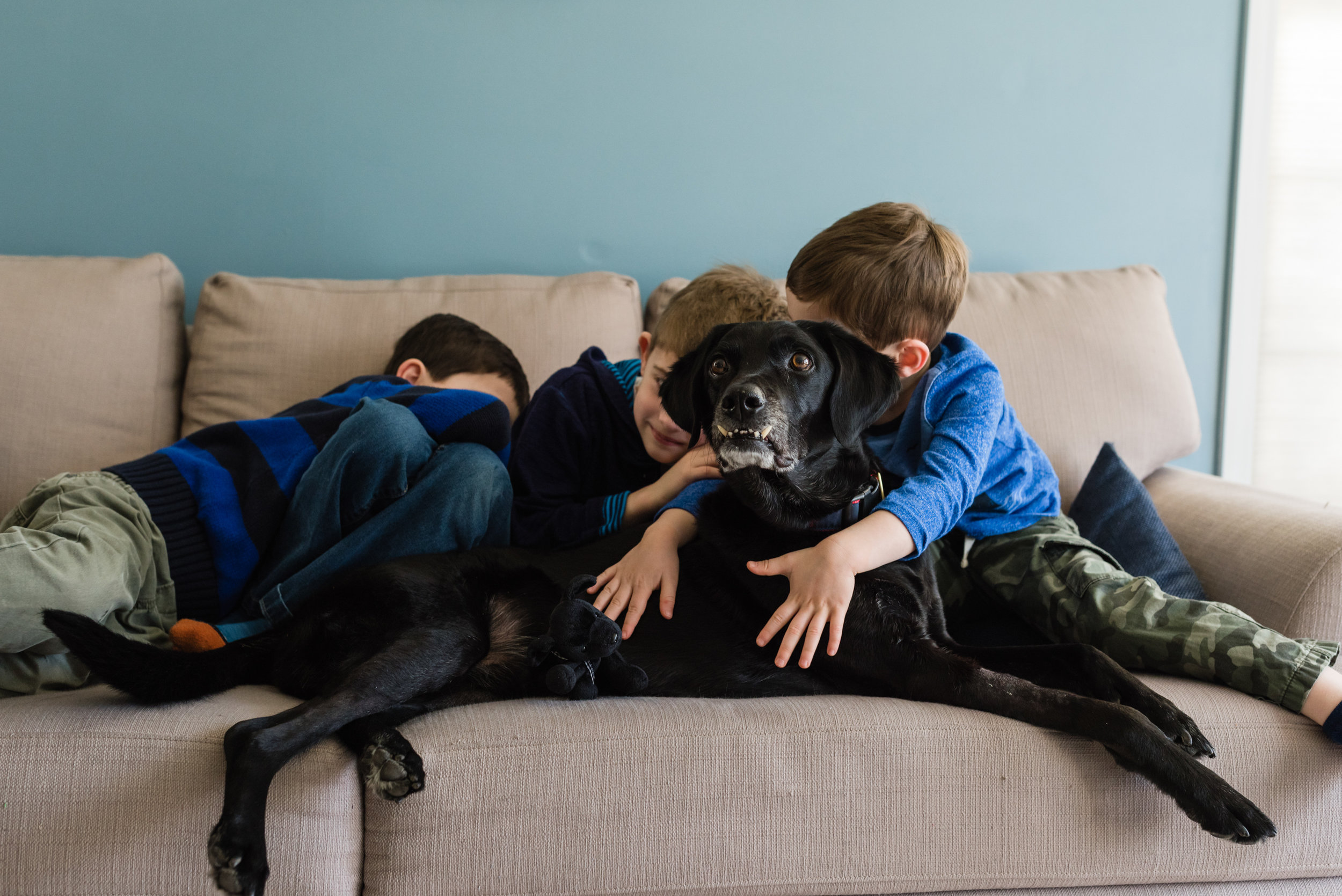 family session with dog sons kids and dog