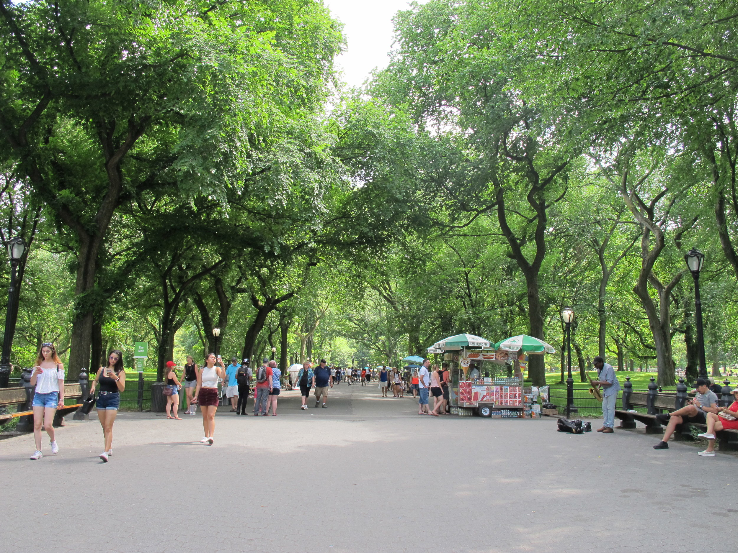 The Mall and Literary Walk in Central Park