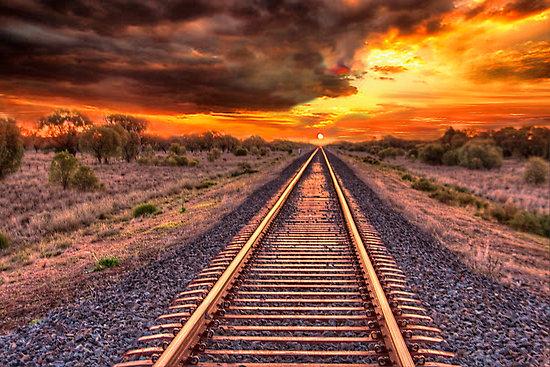janis-cohen-back-on-track.jpg